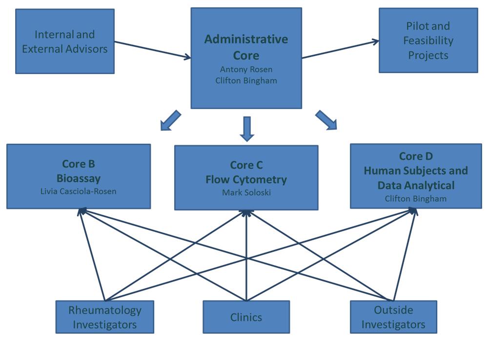 Administration Core : Organization Chart
