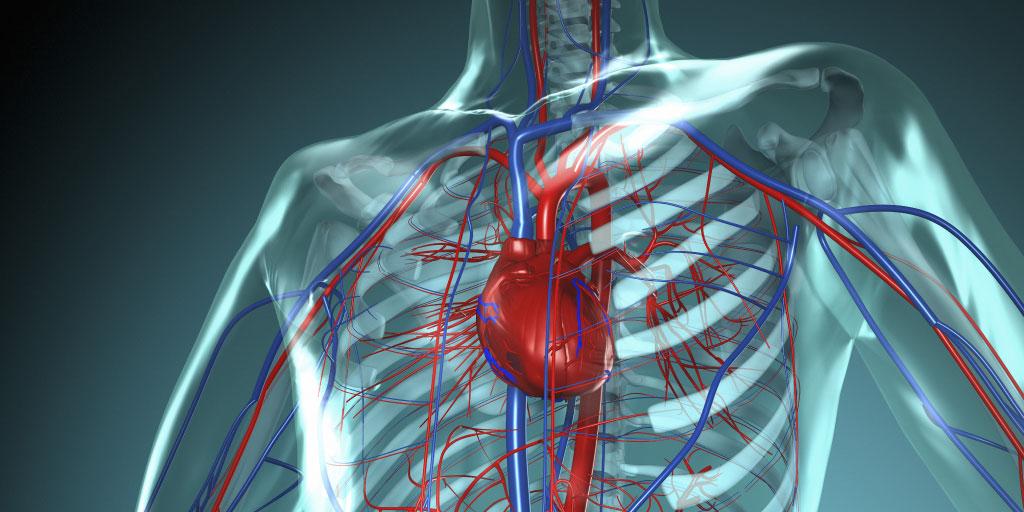 Advanced Echo Detection of Heart Disease in Scleroderma
