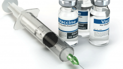 Improving Immunization Rates in Adults with Rheumatic Diseases