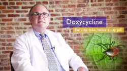 Doxycycline and Lyme Disease Treatment