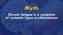 Lupus and Chronic Fatigue Myth