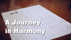A Journey in Harmony